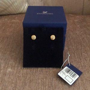 Swarovski Rose Gold Crystal Stud Earrings